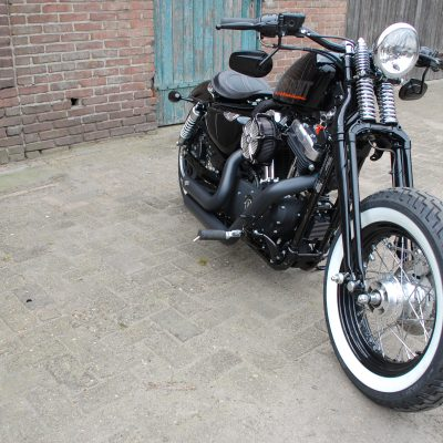forty eight springer 6